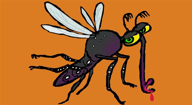 dengue-fever-1151682_640