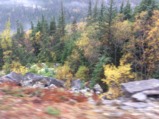 View from the White Pass and Yukon Route